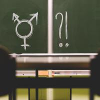 Eine Schultafel mit einem genderqueer-Symbol. Foto: Stephanie Gmeiner