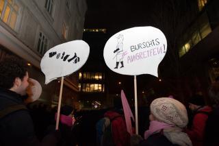"""Bunter und kreativer Protest gegen den """"Akademikerball"""" im Januar 2013. Foto: Luiza Puiu"""