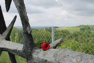 Eine Blume auf einem Teil des Denkmals der DDR. Im Hintergrund sieht man auf den Steinbruch. Das Denkmal befindet sich direkt an der Steinbruchkante. Foto: Nina Aichberger