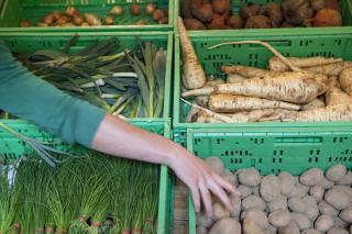 Gemüsekisten in einer foodcoop