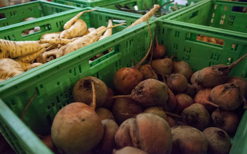 Foodcoop-Mitglieder wollen wissen, woher ihr Essen stammt. Foto: Johanna Rauch